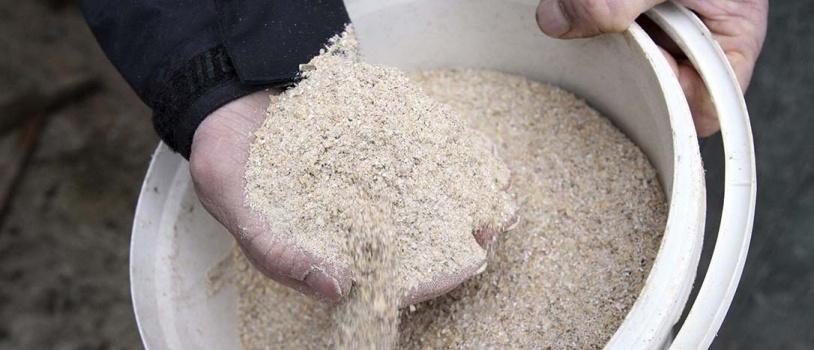 El Gobierno regulará la composición de piensos medicamentosos para la ganadería