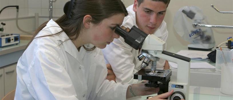 Desarrollan antibióticos respetuosos con el medio ambiente